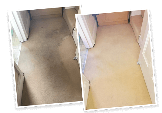 carpet cleaning services orpington